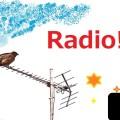 サッカー関連のフランス語、スペイン語のポップスが聴ける特別ラジオ番組。英語以外のポップスもやっぱ楽しい。